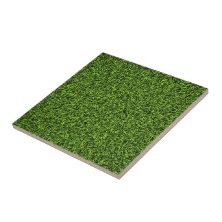 Fondo de la hierba tejas
