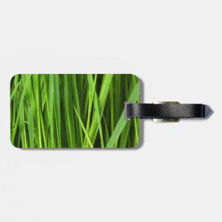 Fondo de la hierba verde etiqueta de maleta
