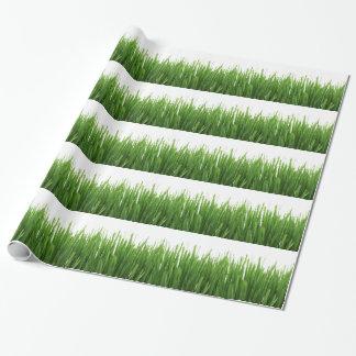 Fondo de la hierba verde papel de regalo