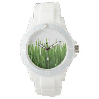 Fondo de la hierba verde relojes