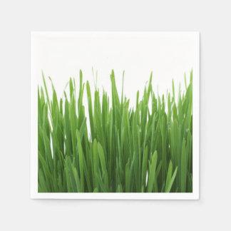 Fondo de la hierba verde servilleta desechable