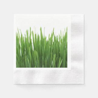 Fondo de la hierba verde servilletas de papel