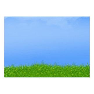Fondo de la hierba verde y del cielo azul tarjetas de visita grandes