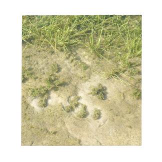 Fondo de la hierba y de la arena de la charca bloc de notas