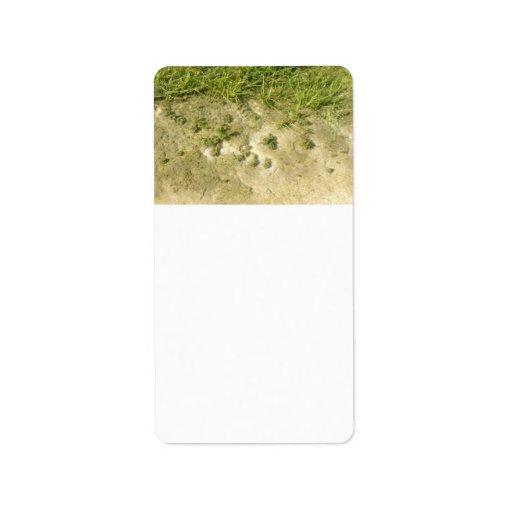 Fondo de la hierba y de la arena de la charca etiqueta de dirección