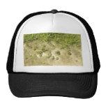 Fondo de la hierba y de la arena de la charca gorras
