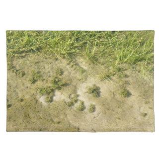 Fondo de la hierba y de la arena de la charca manteles individuales