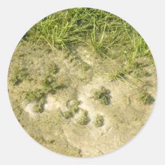 Fondo de la hierba y de la arena de la charca pegatina redonda