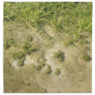 Fondo de la hierba y de la arena de la charca servilleta de papel