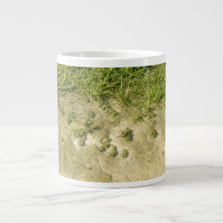 Fondo de la hierba y de la arena de la charca taza grande