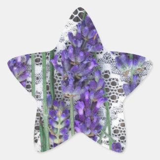 fondo de la lavanda pegatina en forma de estrella