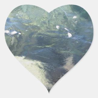 Fondo de la naturaleza de fluir transparente de la pegatina en forma de corazón