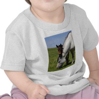 Fondo de la naturaleza del destino de la granja de camiseta
