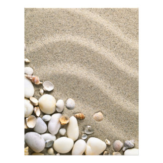 """Fondo de la playa de Sandy con las cáscaras y las  Folleto 8.5"""" X 11"""""""