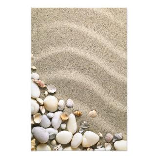 Fondo de la playa de Sandy con las cáscaras y las  Fotografías