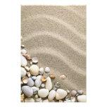Fondo de la playa de Sandy con las cáscaras y las  Impresiones Fotograficas
