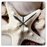 Fondo de las estrellas de mar de Shell del mar - c Relojes
