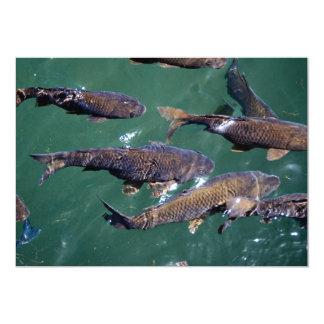 Fondo de los pescados comunicados personalizados