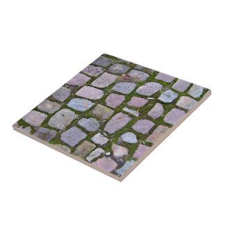 Fondo de pavimentar bloques con el musgo teja  ceramica