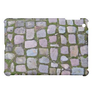 Fondo de pavimentar bloques con el musgo