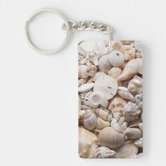 Fondo de Shell del mar de la Florida - la playa de Llavero