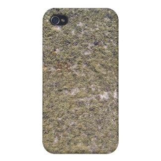 Fondo de tierra cubierto de musgo iPhone 4/4S carcasas