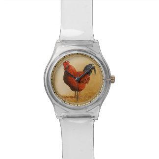 Fondo del amarillo del gallo del rojo de Rhode Reloj De Mano
