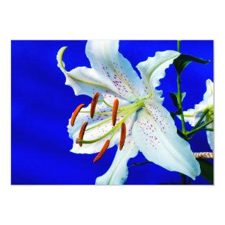 """fondo del azul real de la flor del lirio invitación 5"""" x 7"""""""