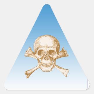 Fondo del cráneo y del cielo de los huesos de la pegatina triangular