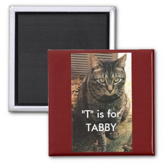 Fondo del marrón del imán del gato de Tabby