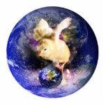 Fondo del polluelo W/Earth de la tierra Esculturas Fotograficas
