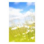 Fondo del prado de la primavera de Beautifufl Papelería