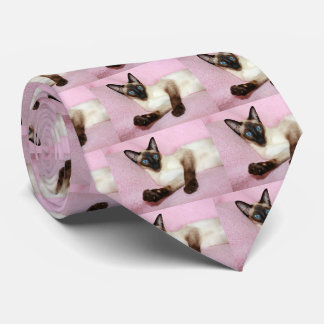 Fondo del rosa del gato siamés corbatas