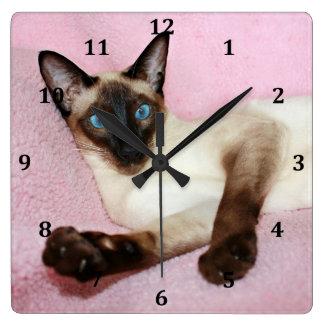 Fondo del rosa del gato siamés reloj cuadrado