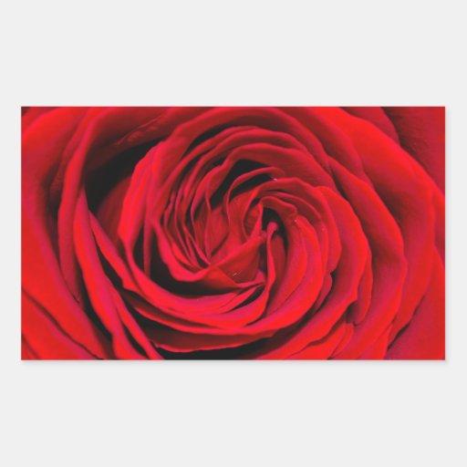 Fondo del rosa rojo pegatina rectangular
