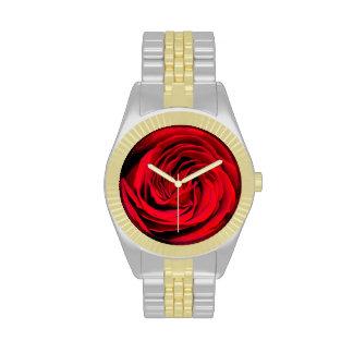 Fondo del rosa rojo relojes