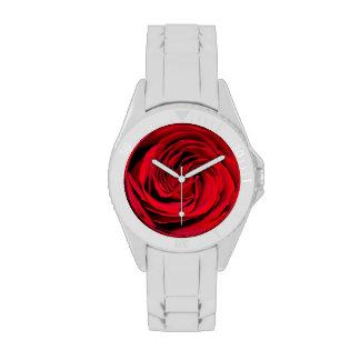 Fondo del rosa rojo relojes de pulsera