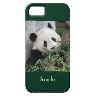 fondo del verde de la panda gigante del caso del funda para iPhone SE/5/5s