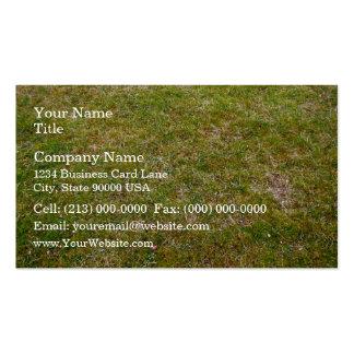 Fondo fresco de la hierba verde plantillas de tarjeta de negocio