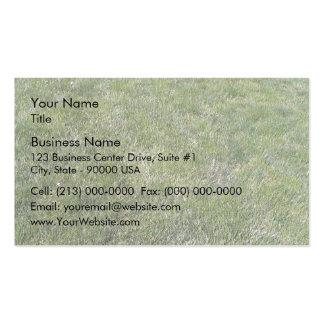 Fondo fresco de la hierba verde tarjetas personales