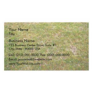 Fondo fresco de la hierba verde tarjetas de visita