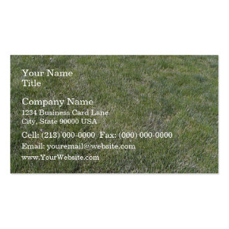 Fondo fresco de la hierba verde plantilla de tarjeta personal