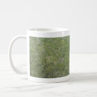 Fondo fresco de la hierba verde taza