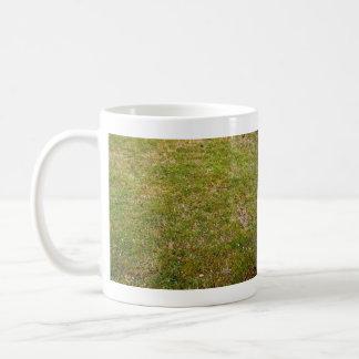 Fondo fresco de la hierba verde taza de café