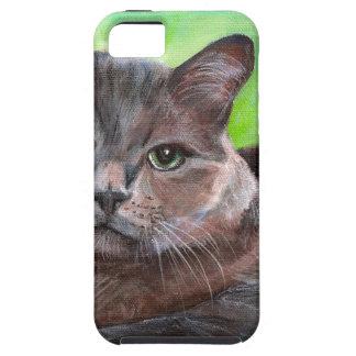 Fondo gris grande del verde del gatito del mascota iPhone 5 funda