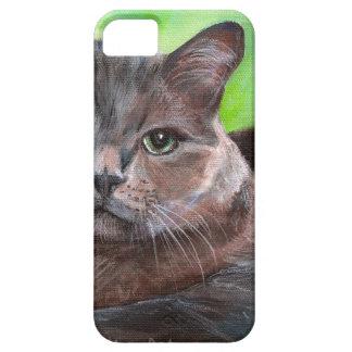 Fondo gris grande del verde del gatito del mascota iPhone 5 carcasas