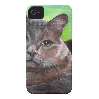 Fondo gris grande del verde del gatito del mascota Case-Mate iPhone 4 protectores