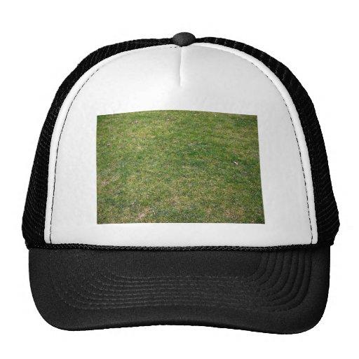 Fondo hermoso de la hierba verde gorros bordados