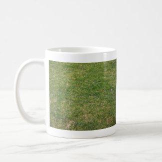 Fondo hermoso de la hierba verde tazas