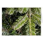 Fondo imperecedero del árbol de pino del día de fi felicitacion